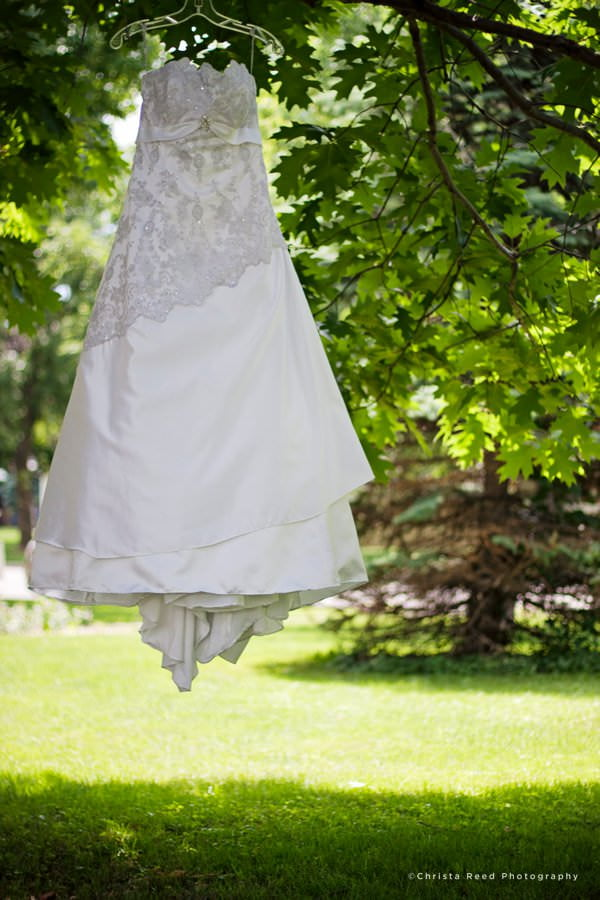 wedding dress in a tree in belle plaine minnesota