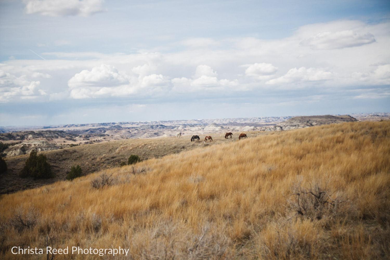 planning a national park wedding in North Dakota