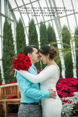 portraits for a winter elopement at como conservatory