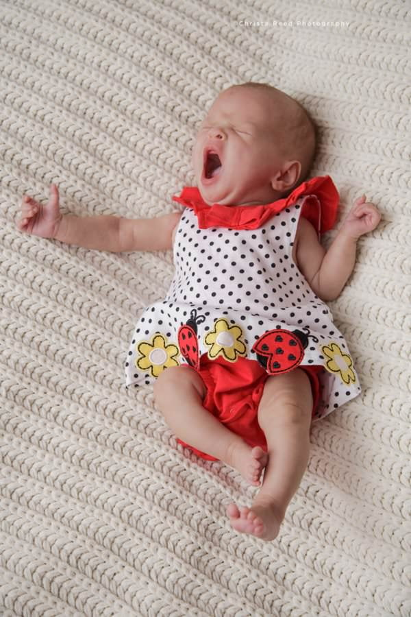 in home newborn photography with a ladybug dress