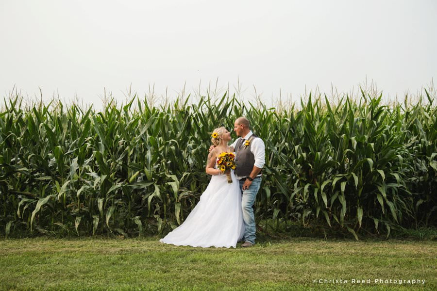 lesueur wedding photography in a cornfield with a bride and groom