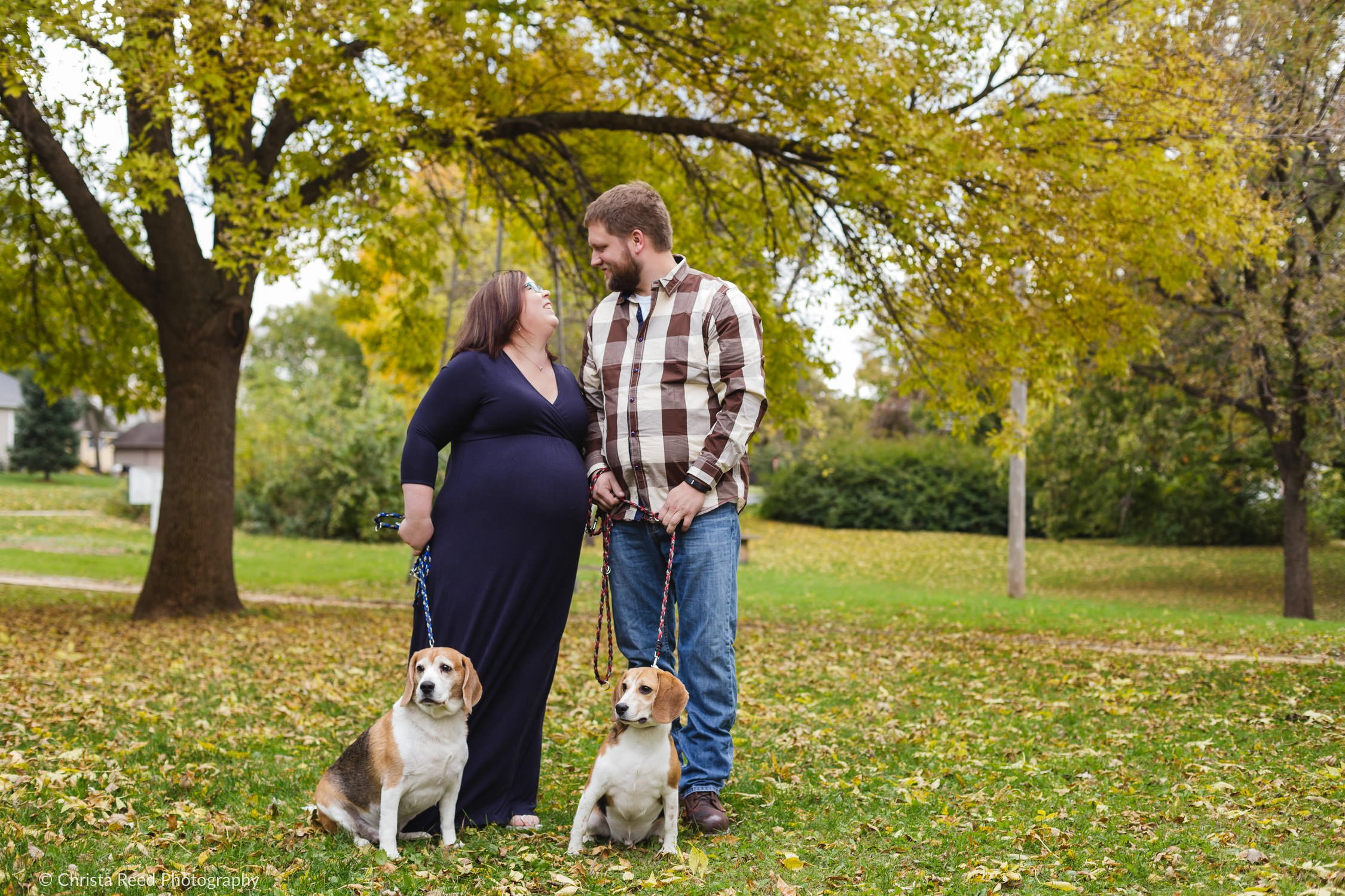 Belle Plaine Mn Maternity Photography portraits with your dogs