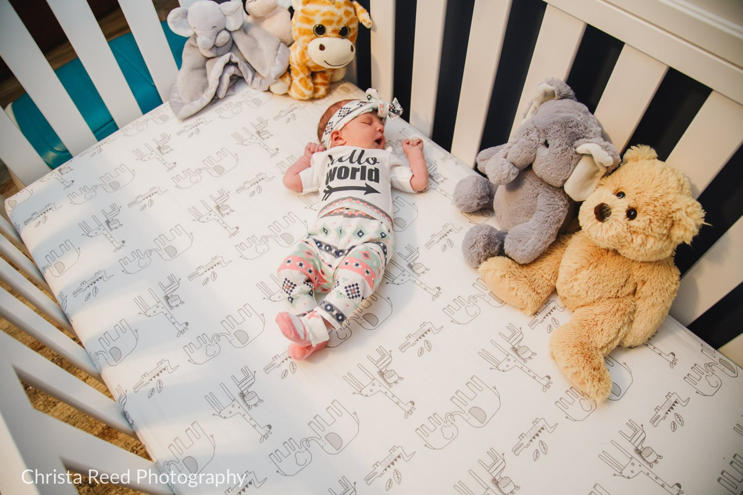baby portraits in the crib in le sueur minnesota