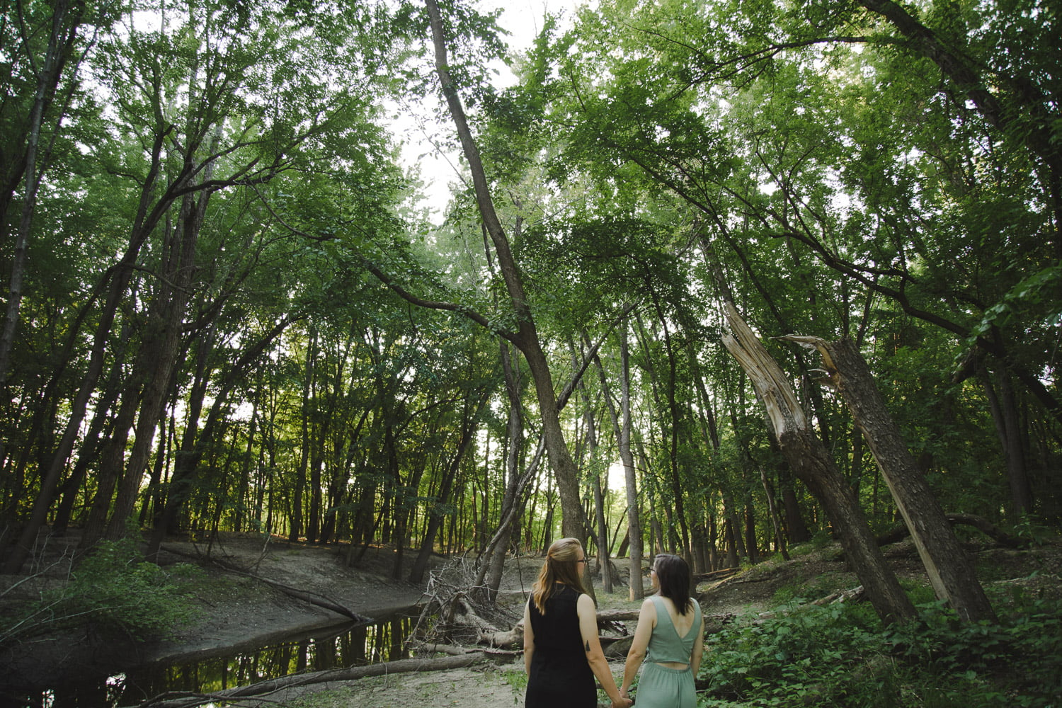 a couple is surrounded by tall trees for their scenic engagement photos