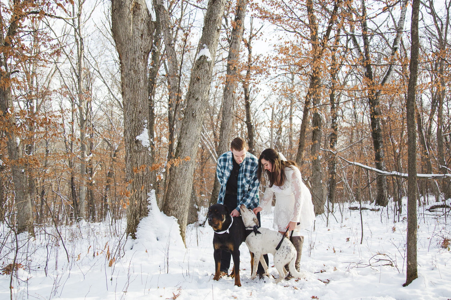a couple walks their dogs during portraits at lake maria state park