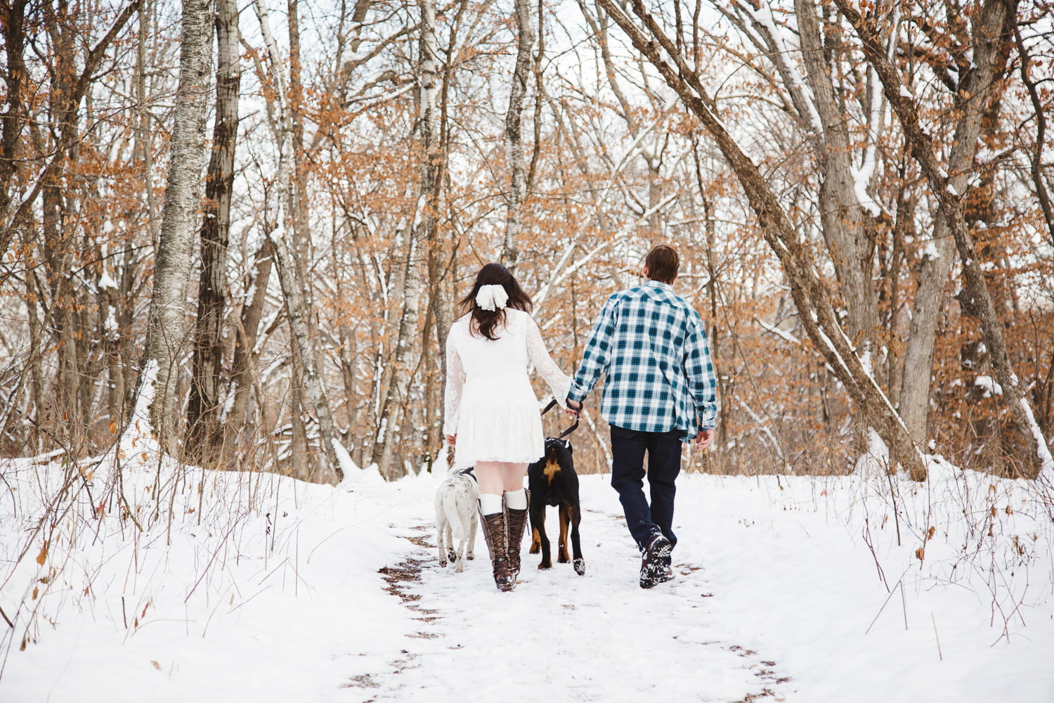 walking your dogs on the trail at lake maria state park